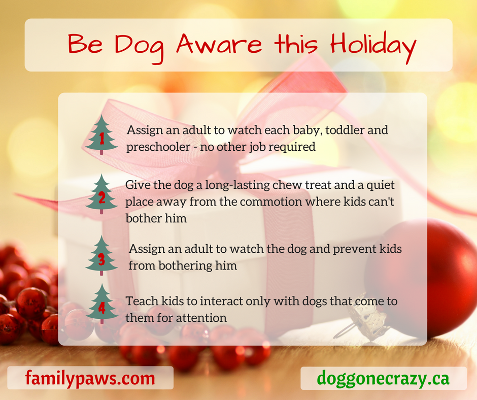Holiday Dog Aware Tips
