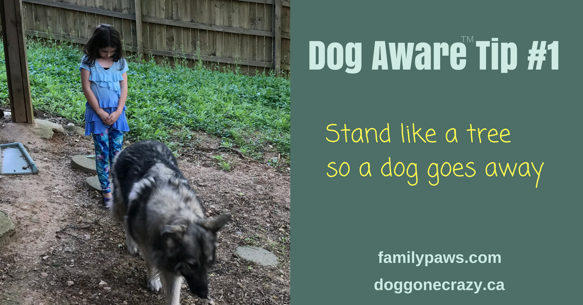 Dog Aware Tip #1 for Kids: Stand Like a Tree