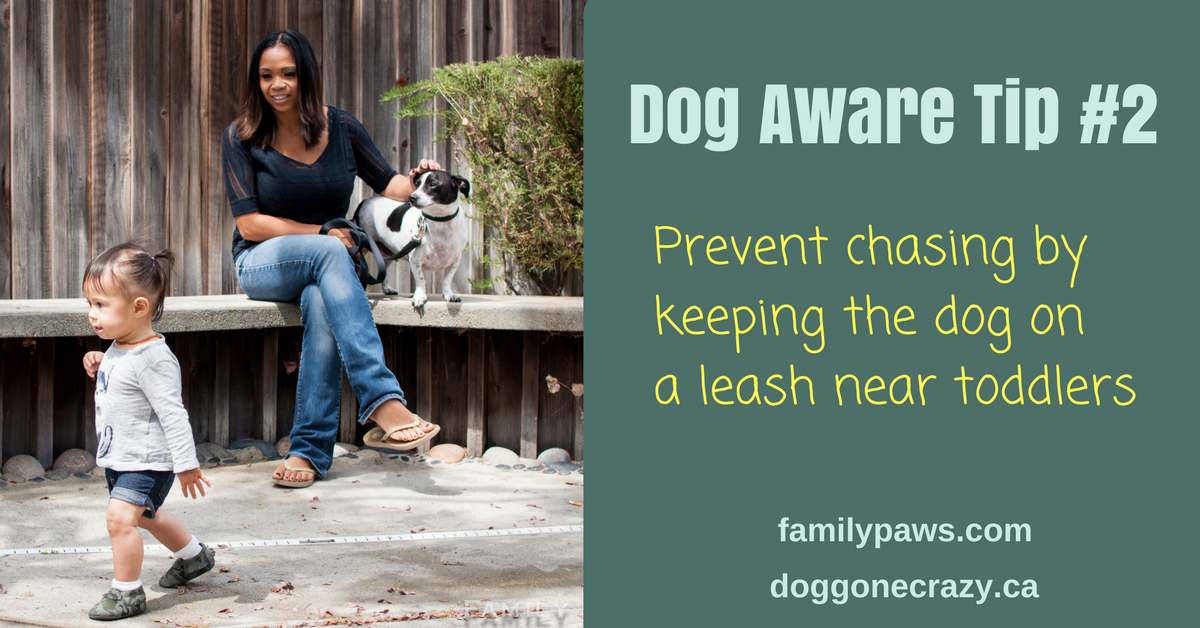 Dog Aware Tip #2: Use Your Leash to Keep Dogs from Chasing