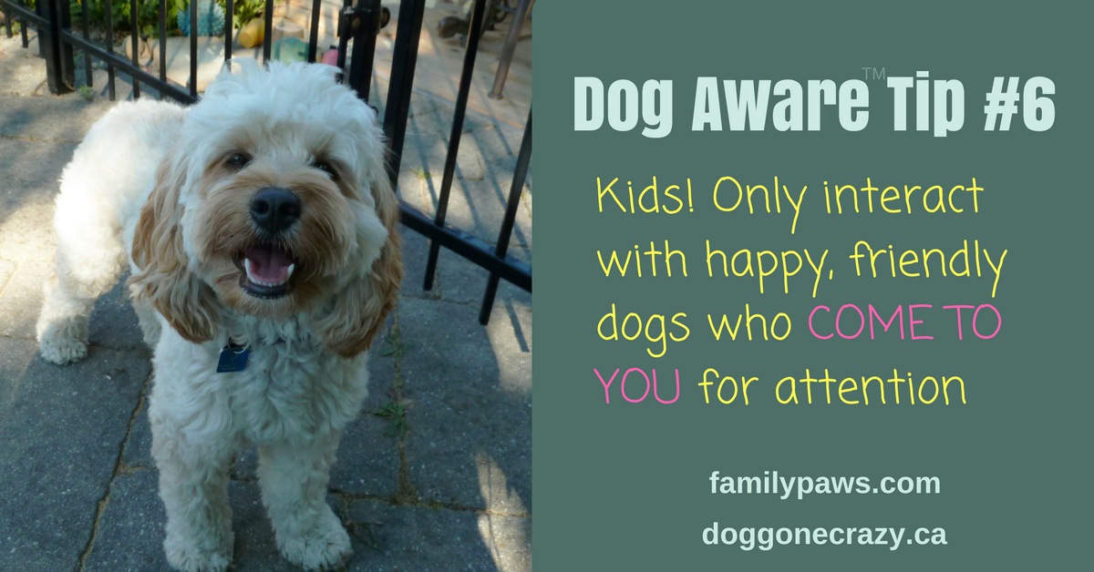 Dog Aware Tip #6: Interact Only with Happy Dogs Who Come to You