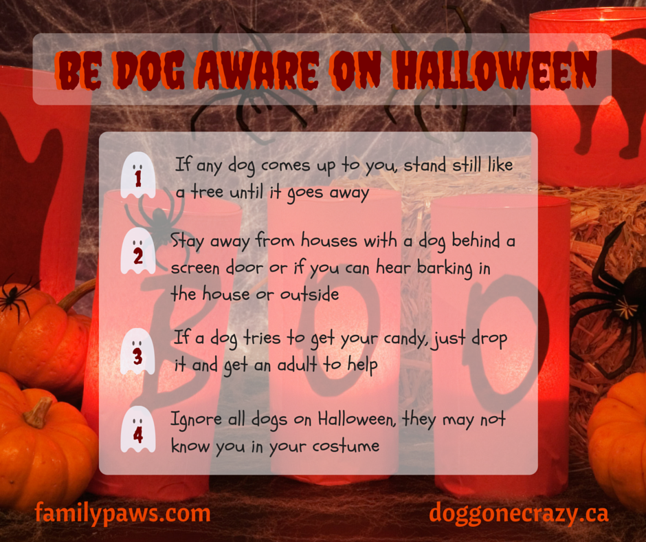 Be Dog Aware this Halloween